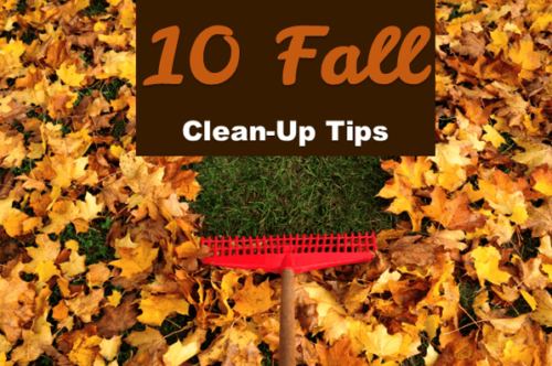 Fall Home Maintenance: 10 Tips to Prepare Your Home for Winter